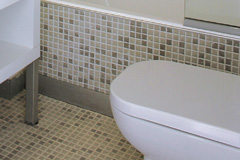 toilet installation Tamworth Green