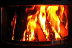 Tamworth Green wood burning stove costs